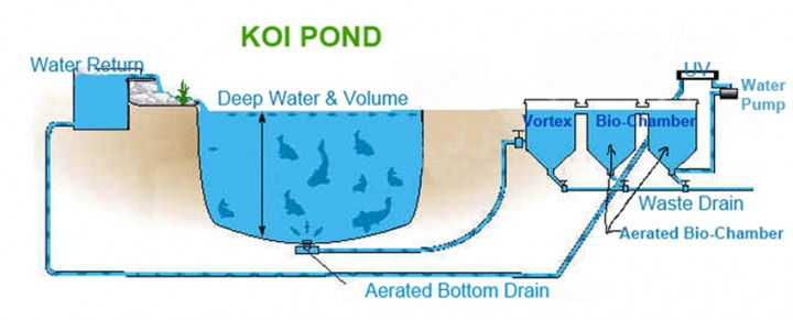 how to set up a pond pump and filter system